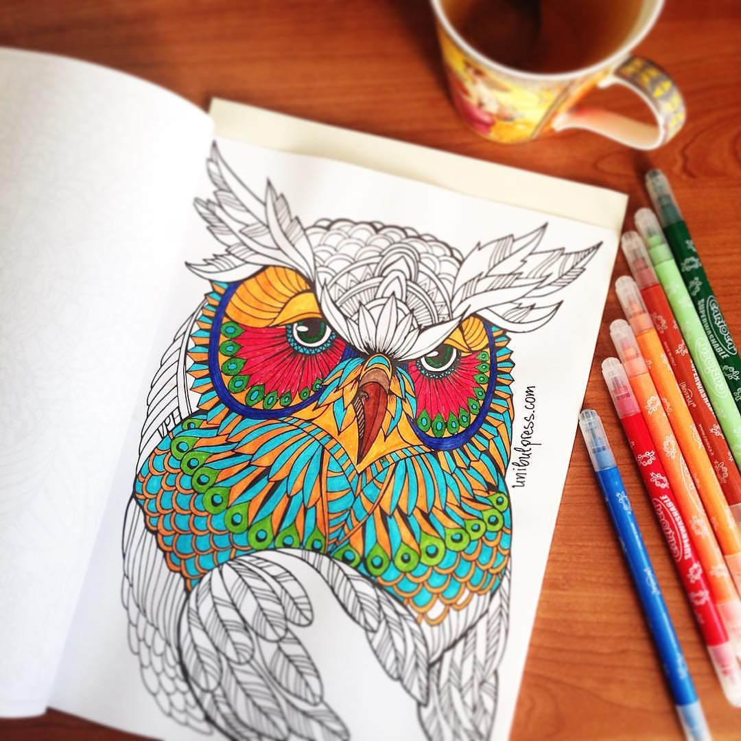 Colorfy plus coloring book - Colored Owl From Adult Coloring Book 29 Animal Designs For Stress Relief Coloring