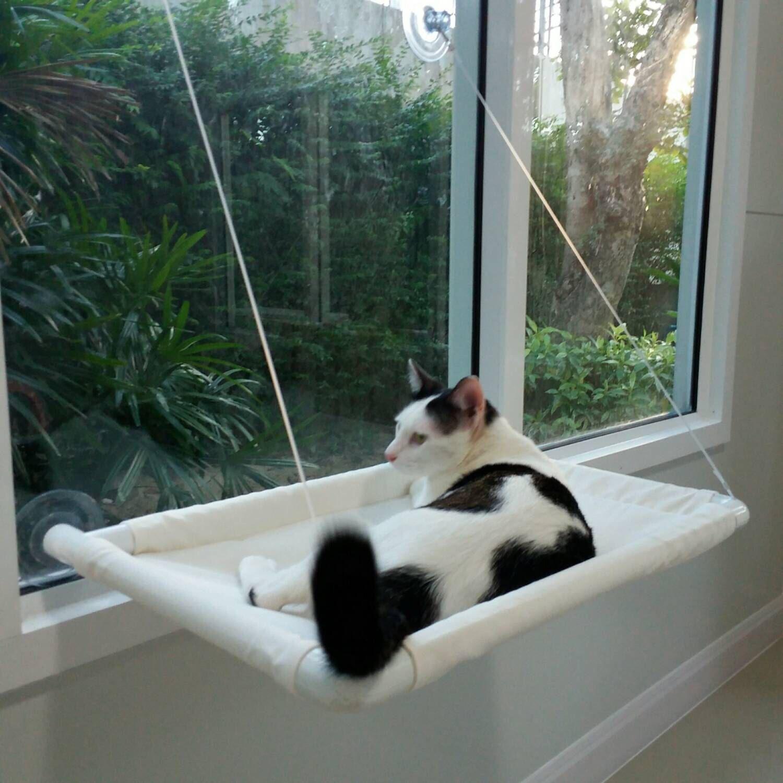 pretty design modern cat bed. Window Cat Bed  Cot Hammock Pets Small Furniture Modern EXPRESS SHIPPING