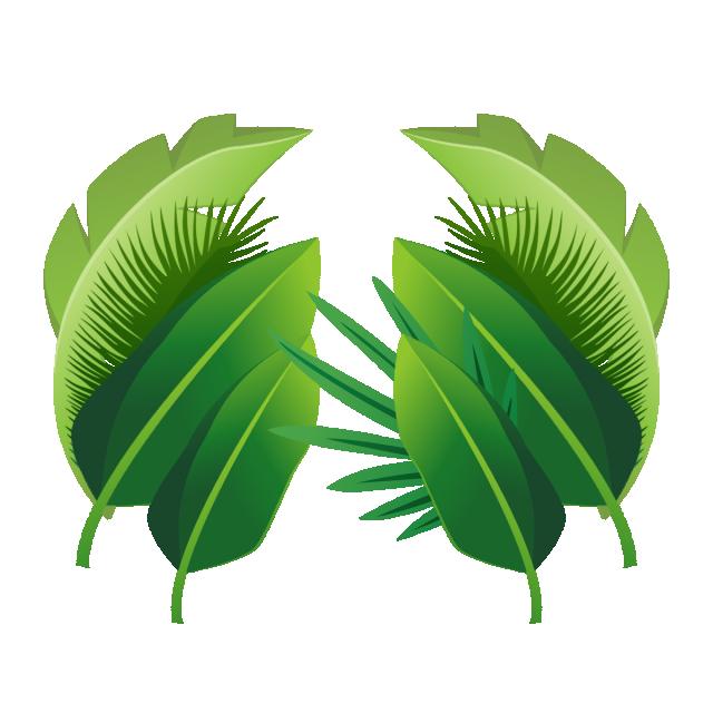 2020 的 Plant Tropical Leaves, Plant, Tropical, Leaves PNG
