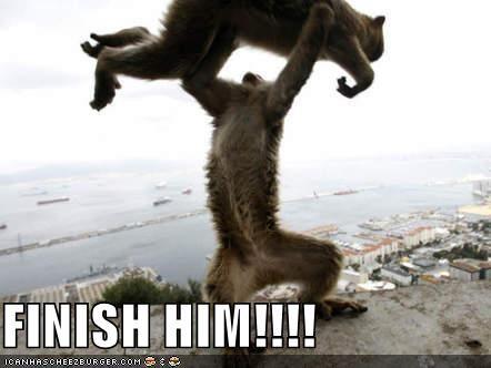 0b3825b5ec3b0b63dd63c80e7bfa2e2a mortal kombat humor pinterest mortal kombat, funny monkey