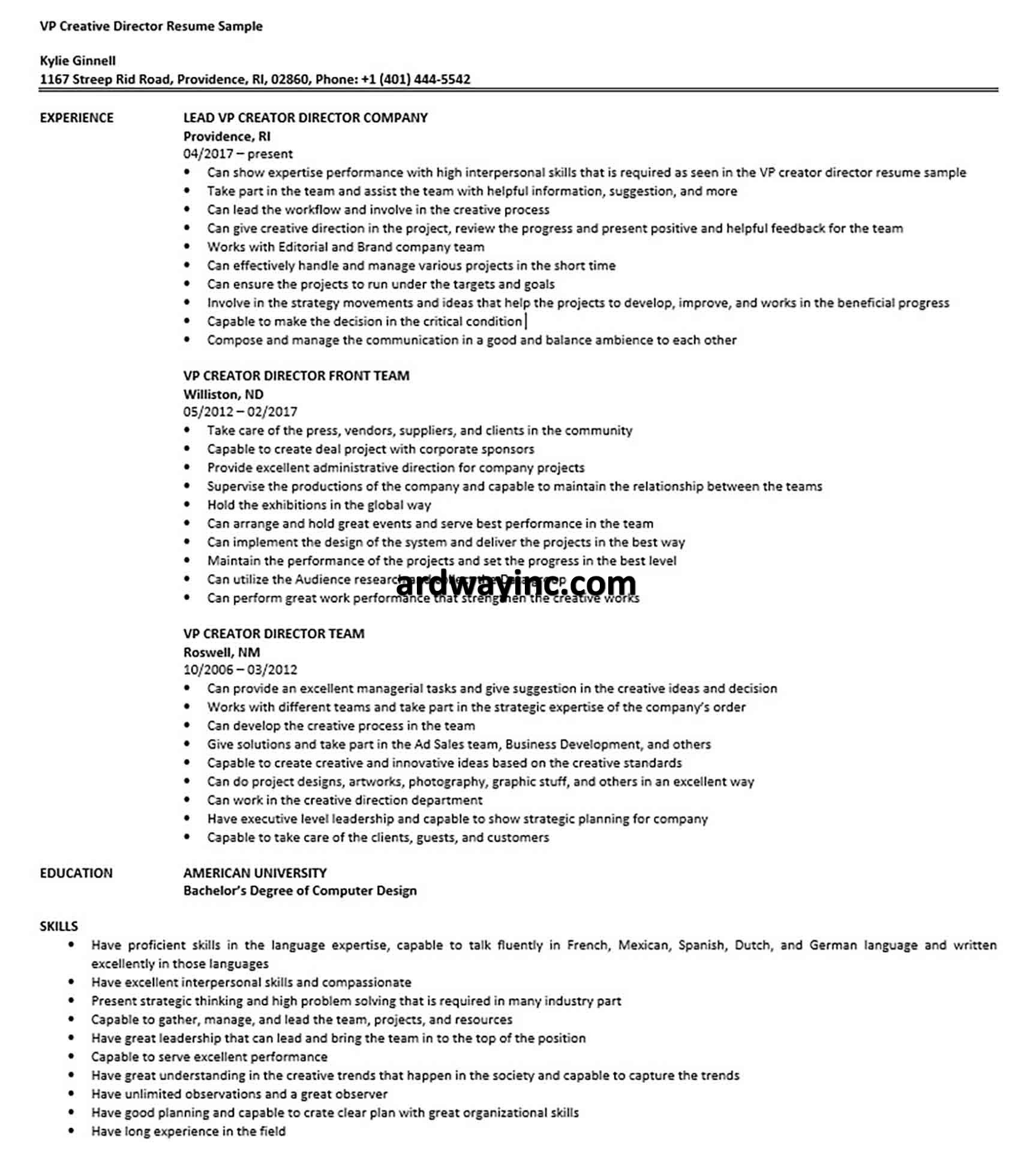 Vp Creative Director Resume Sample Interpersonal Skills Creative Director Resume