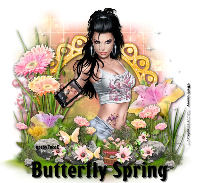 Butterfly Spring