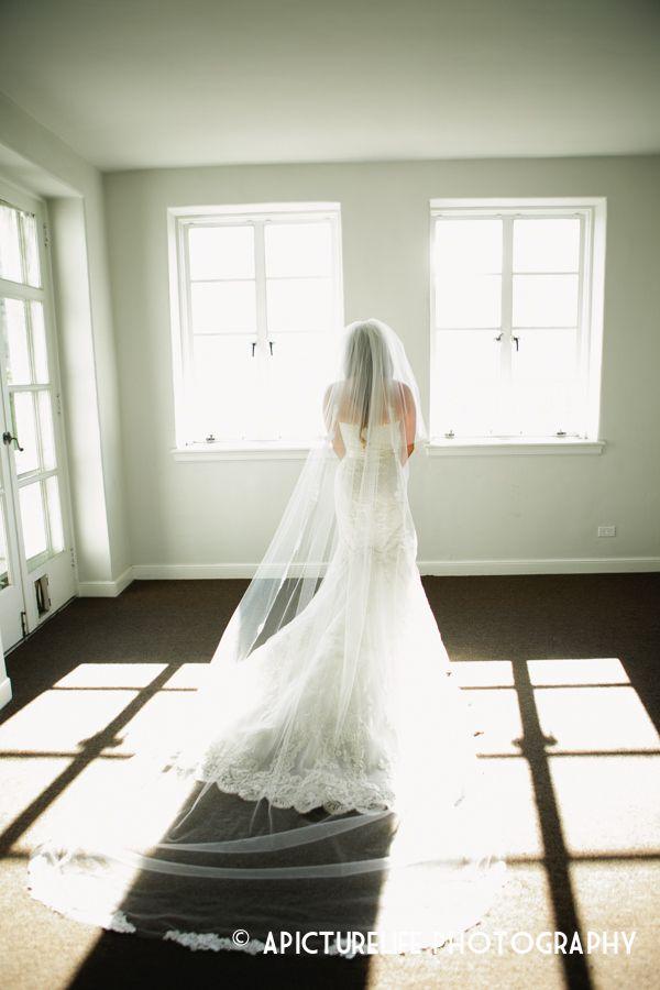 Palomablancawed real bride danielle fishel wore one of our veils at palomablancawed real bride danielle fishel wore one of our veils at her wedding beautiful junglespirit Gallery