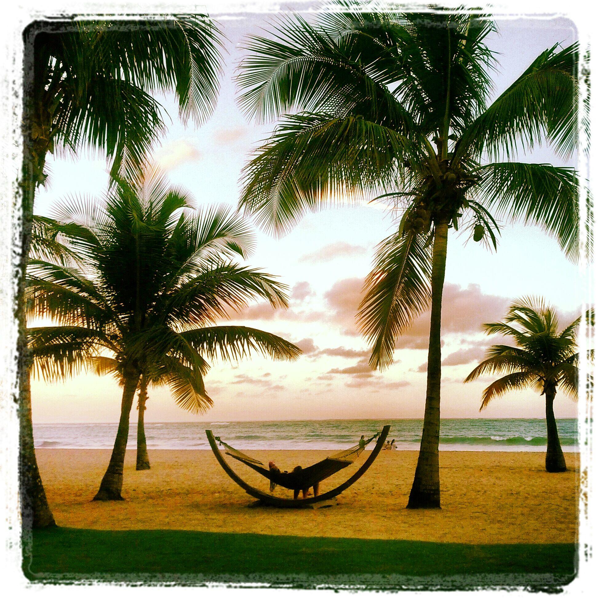 Hamacas hammocks t picas en la playa hamacas - Hamacas de playa ...