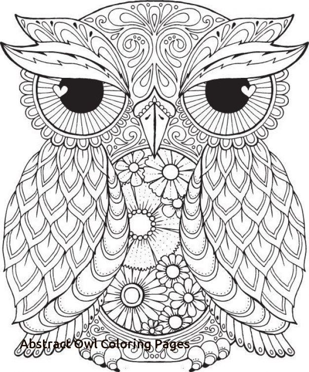 17 Best Ideas About Owl Coloring Pages On Pinterest with ...