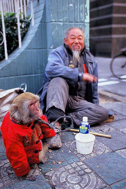 CHINA  | China photo