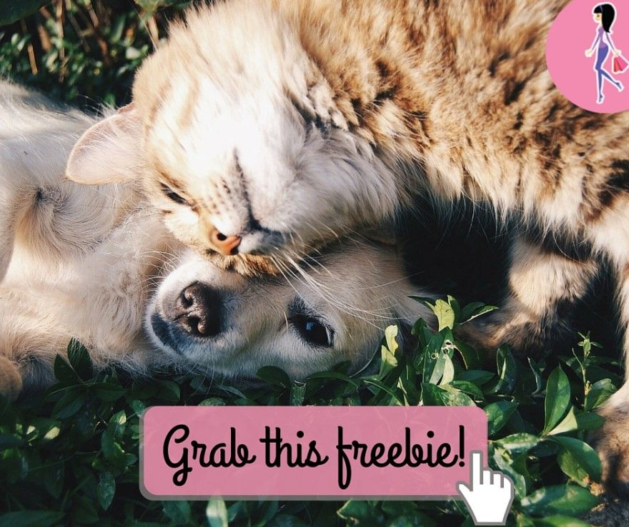 Get effective flea protection for your dog or cat when you try a FREE 30-day pet protection sample from Perrigo. Click for your pet health sample!