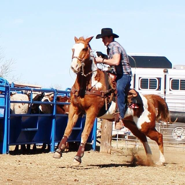 Jon Pardi ropin' in Texas on a big ole paint .... Heavens to Betsy, I just cantttt