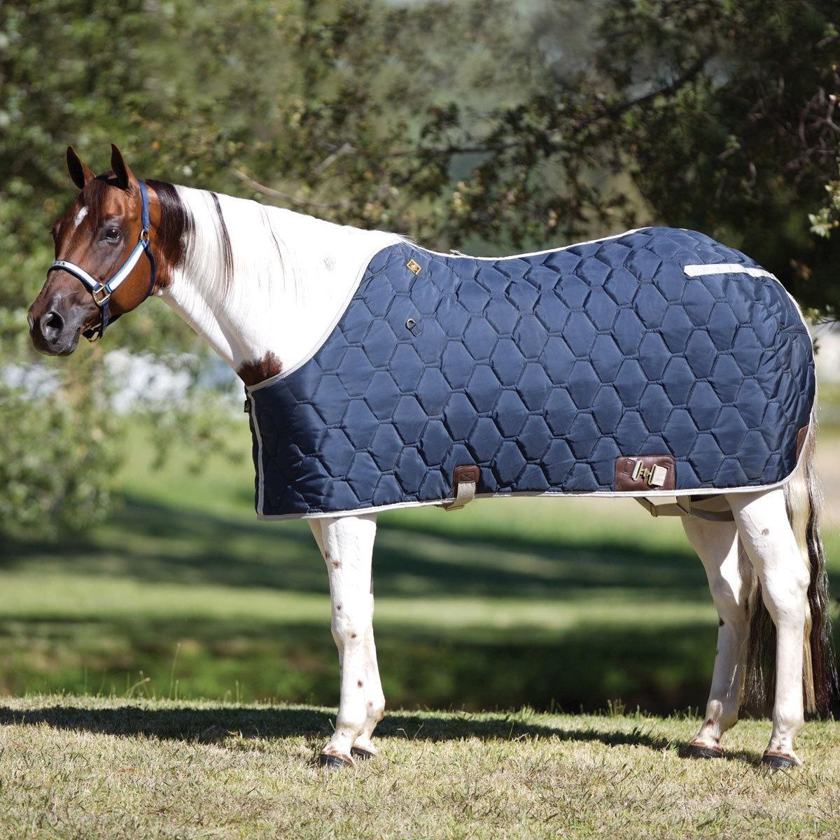 Big D Custom All American Blanket | Horses, Horse care ...