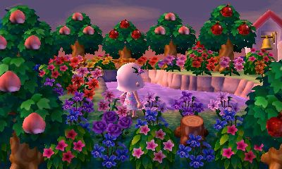 A Forest Life Amy S Animal Crossing Blog Inching Through Time In Ac Nl Animal Crossing New Leaf Acnl