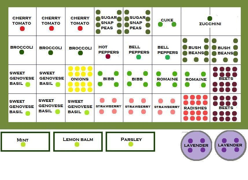 Square Foot Garden Layouts For Different Regions And Sizes Of