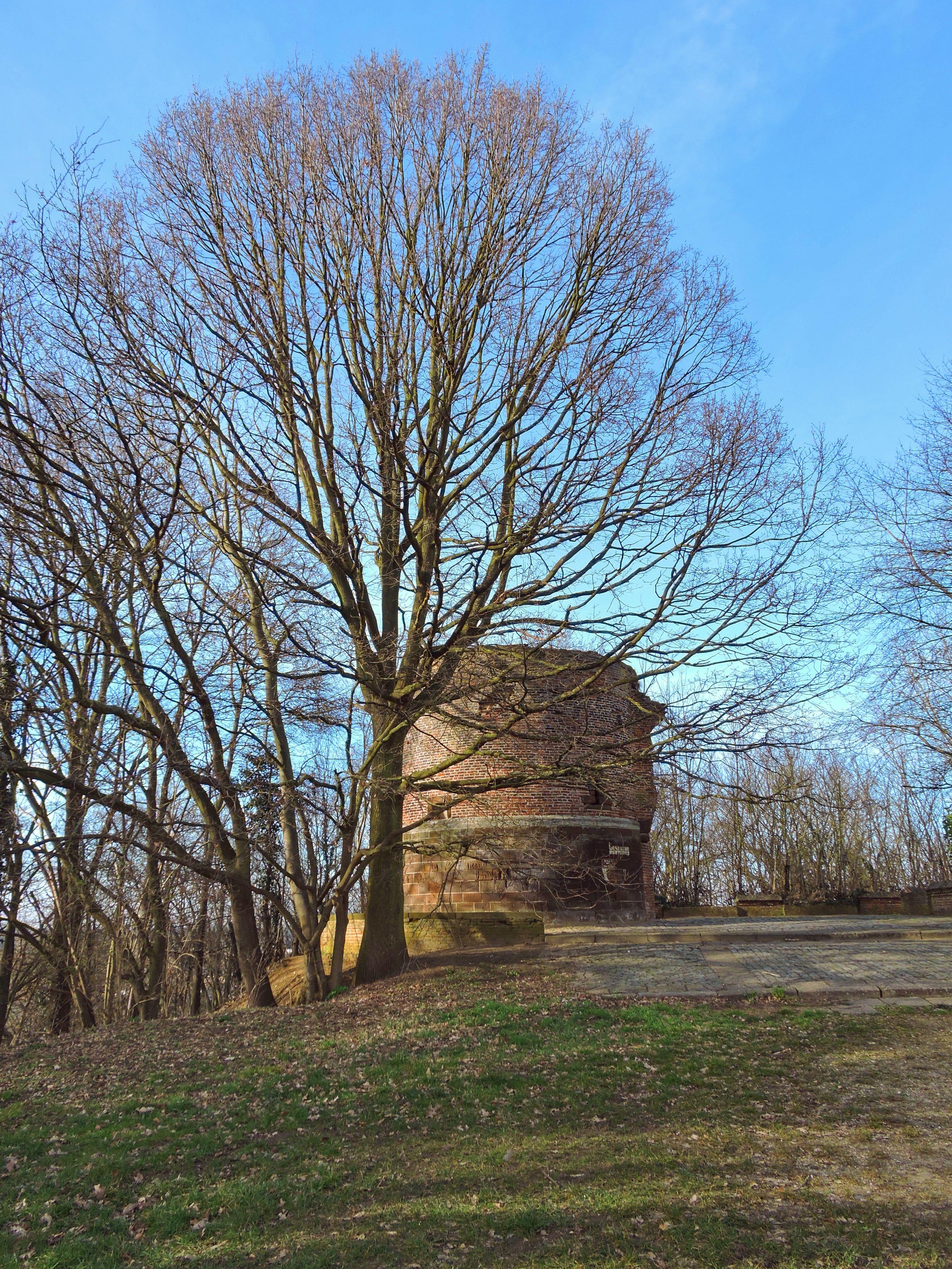 Orleanstoren, Aarschot