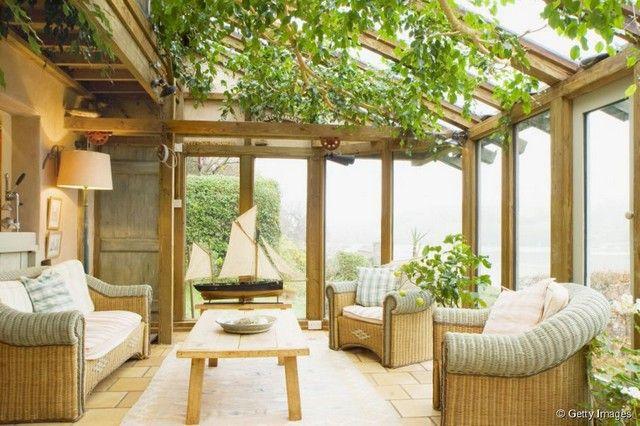 véranda et jardin d'hiver : quelles plantes choisir ? | vérandas