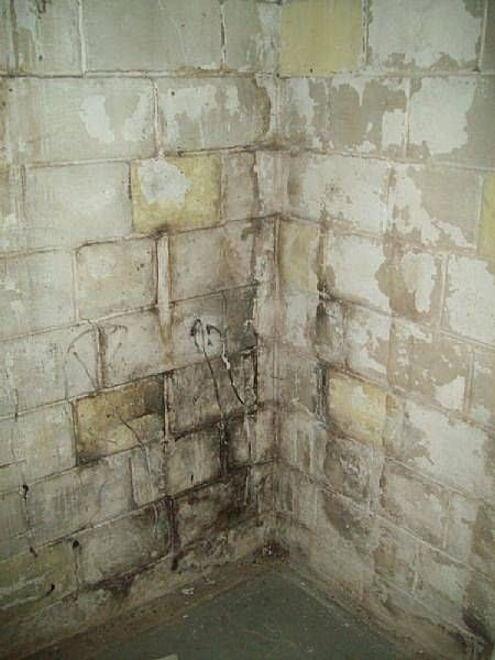 How To Clean Basement Mold In A Cinder Block Foundation
