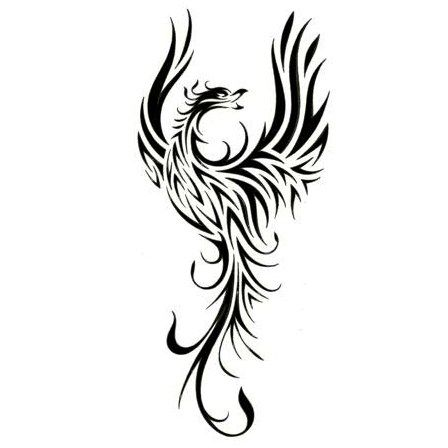 Tribal Dragon Tattoo Line Art Categories Phoenix Tattoos Tribal Tattoos Tribal Phoenix Tattoo Phoenix Tattoo Design