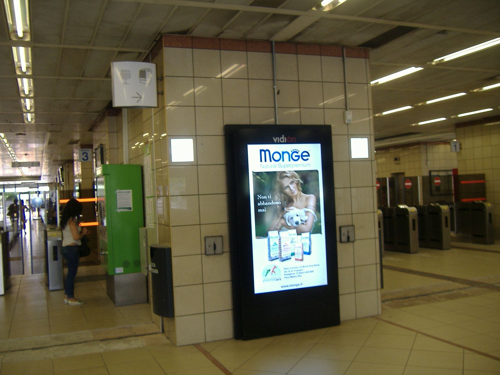 Digimupi Monge - Milano Stazione Domodossola giugno 2015
