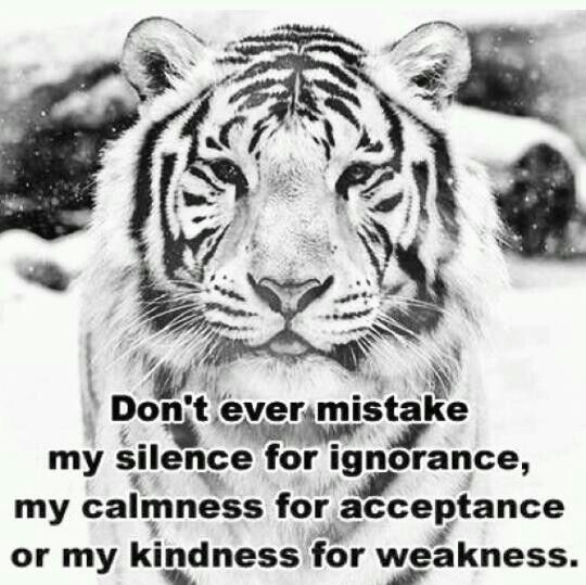 Beautiful Tiger For A Real Message Quotes Personality