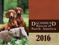 Home Dachshund Rescue Of North America Doxie Store Dachshund