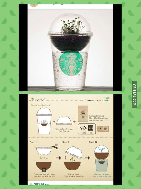 TAKE OUT YOUR GARDEN by starbucks