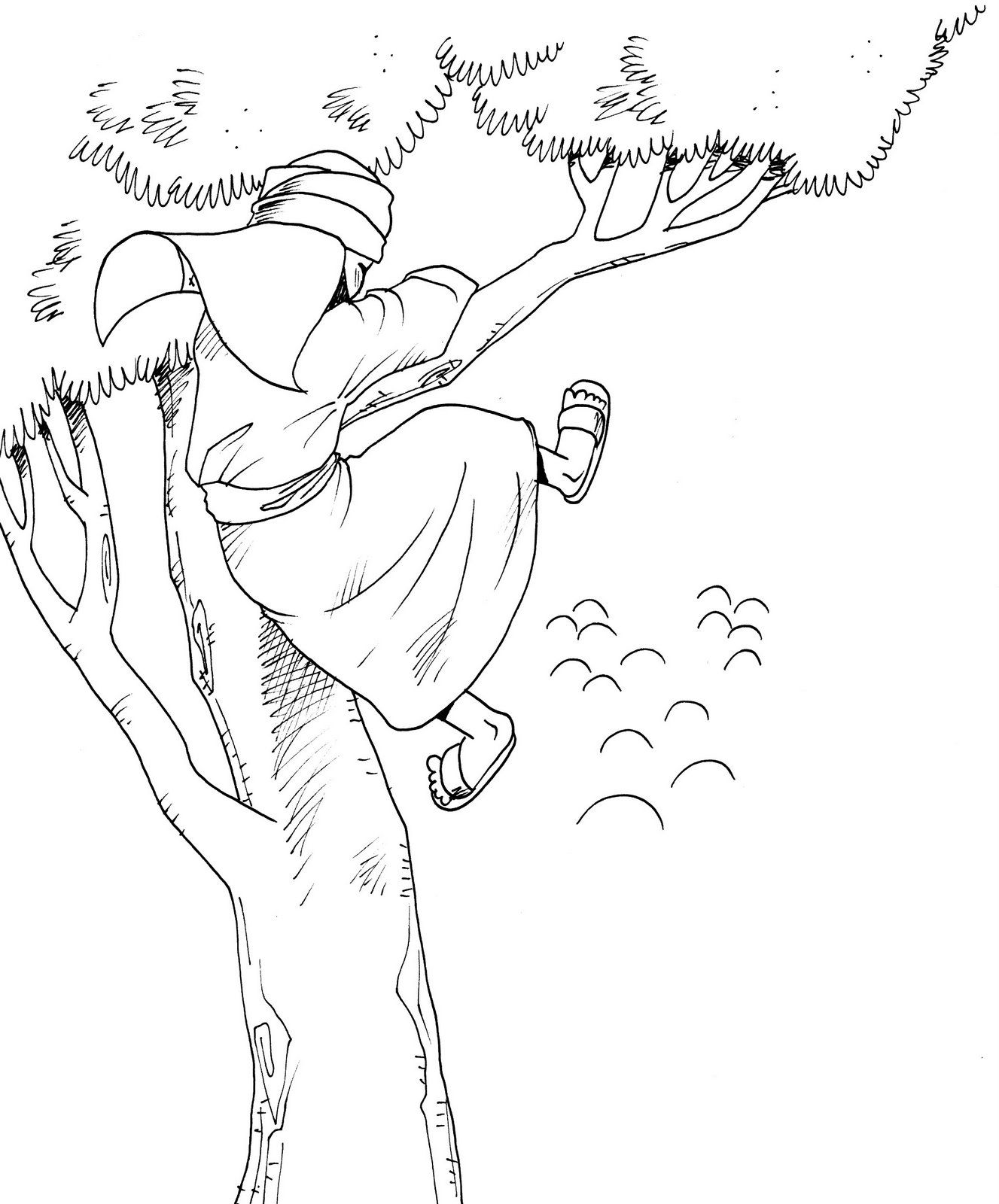 Zaqueo Zacchaeus Sunday School Coloring Pages Bible Coloring Pages [ 1600 x 1327 Pixel ]