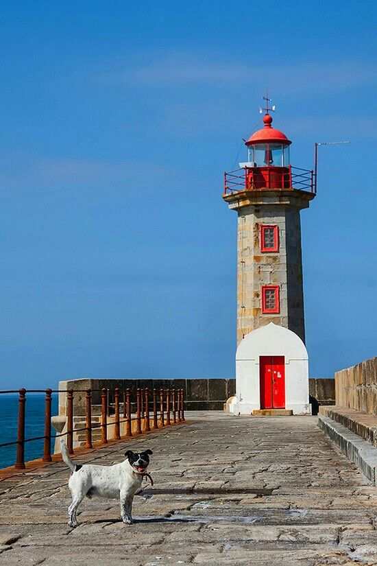 en Oporto Portugal