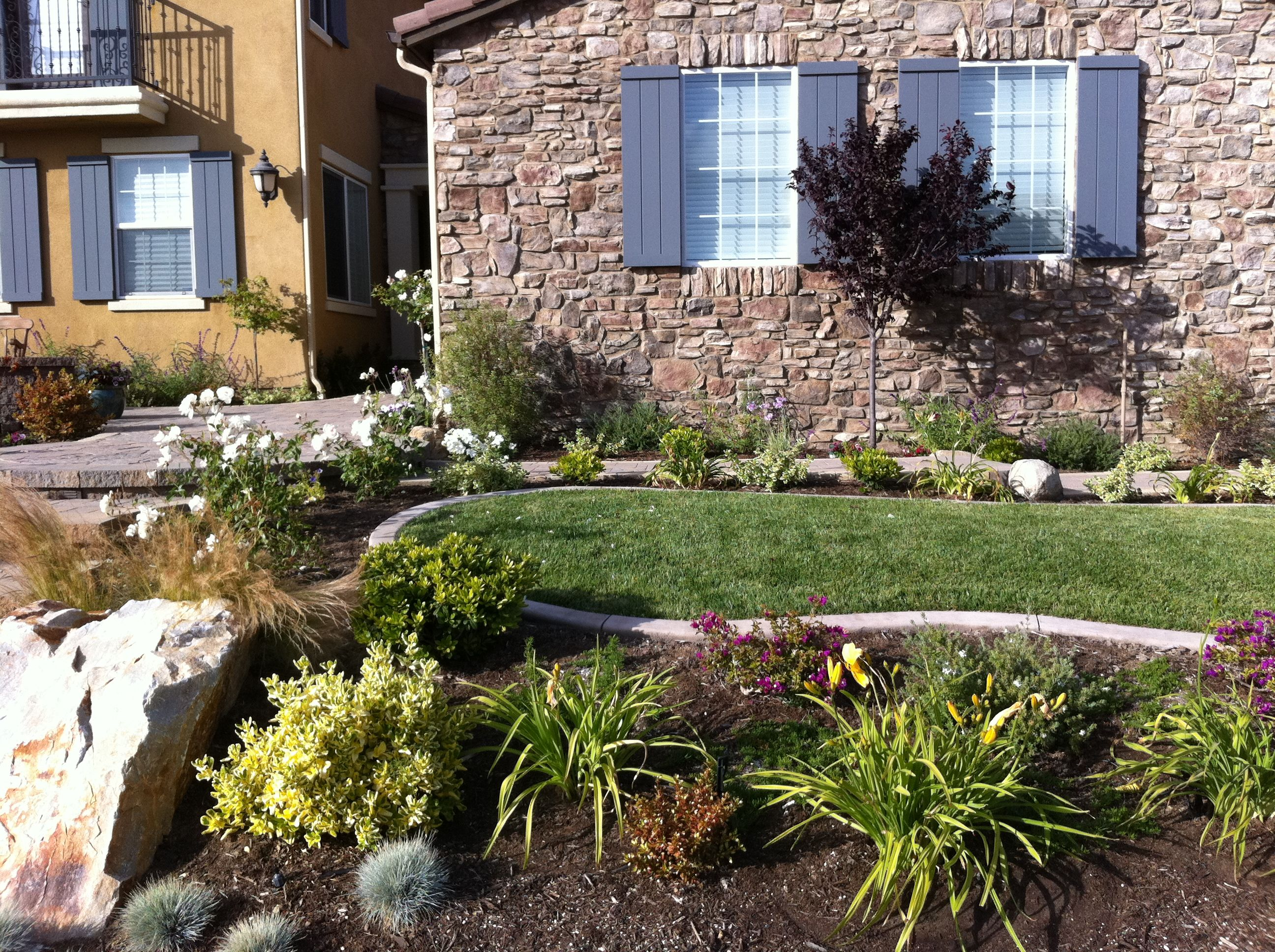 San Diego pretty front yard | Front yard, Water wise ...