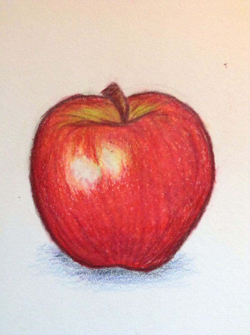 Apple drawing by sabrina fox pencil crayon