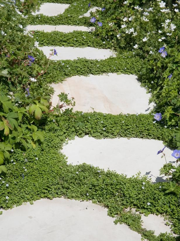 10 Landscaping Ideas For Using Stepping Stones In Your Garden: Gracious Groundcovers