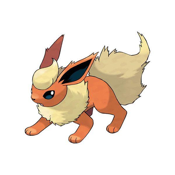 flareon pokédex liked on polyvore featuring pokemon my