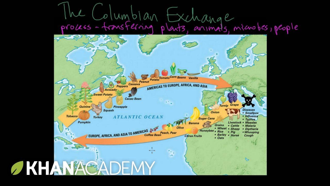 The Columbian Exchange | Columbian exchange, Columbus ...