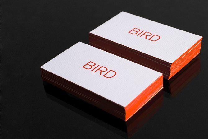 Conqueror Laid By Bird Design