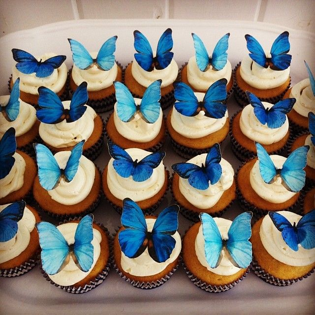 cupcakes with edible butterflies