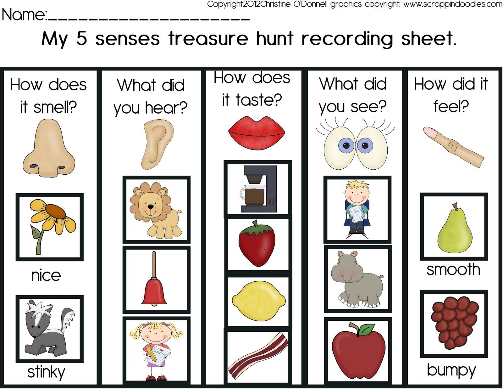Image Result For 5 Senses Scavenger Hunt Senses And Brain