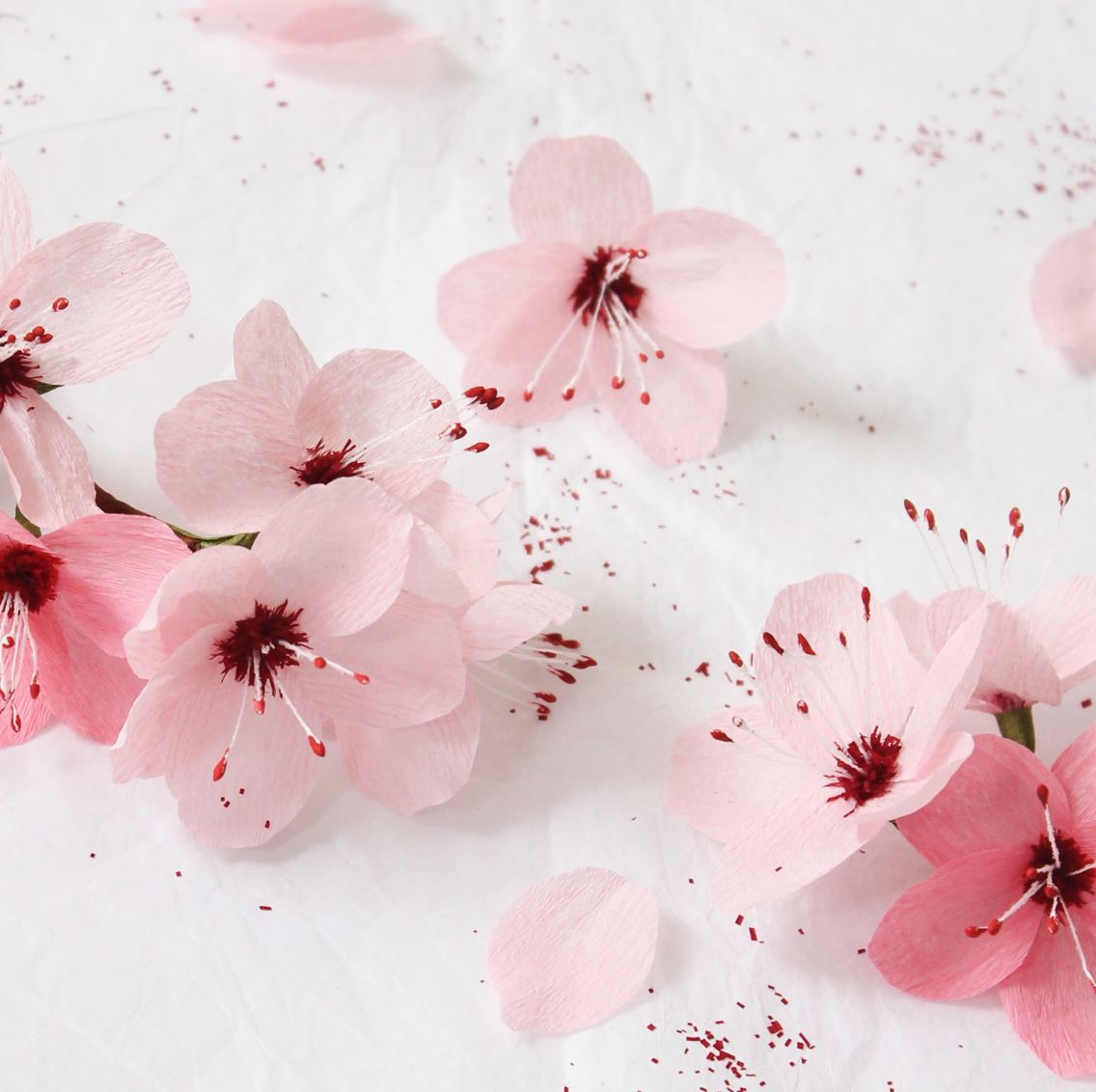 Paper cherry blossoms by a petal unfolds paper flowers pinterest paper cherry blossoms by a petal unfolds mightylinksfo