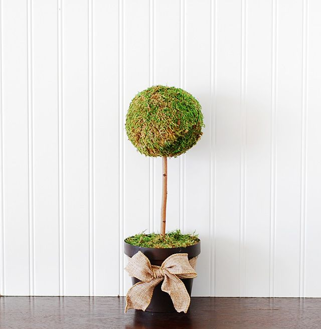 Wedding Topiary Ideas Part - 35: Diy - How To Make A Moss Topiary Tree. Great Idea For Wedding Centerpieces.