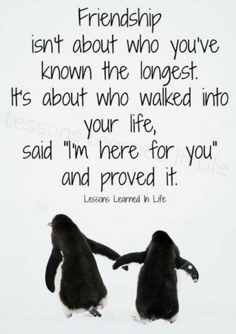 Image result for quotes about best friends