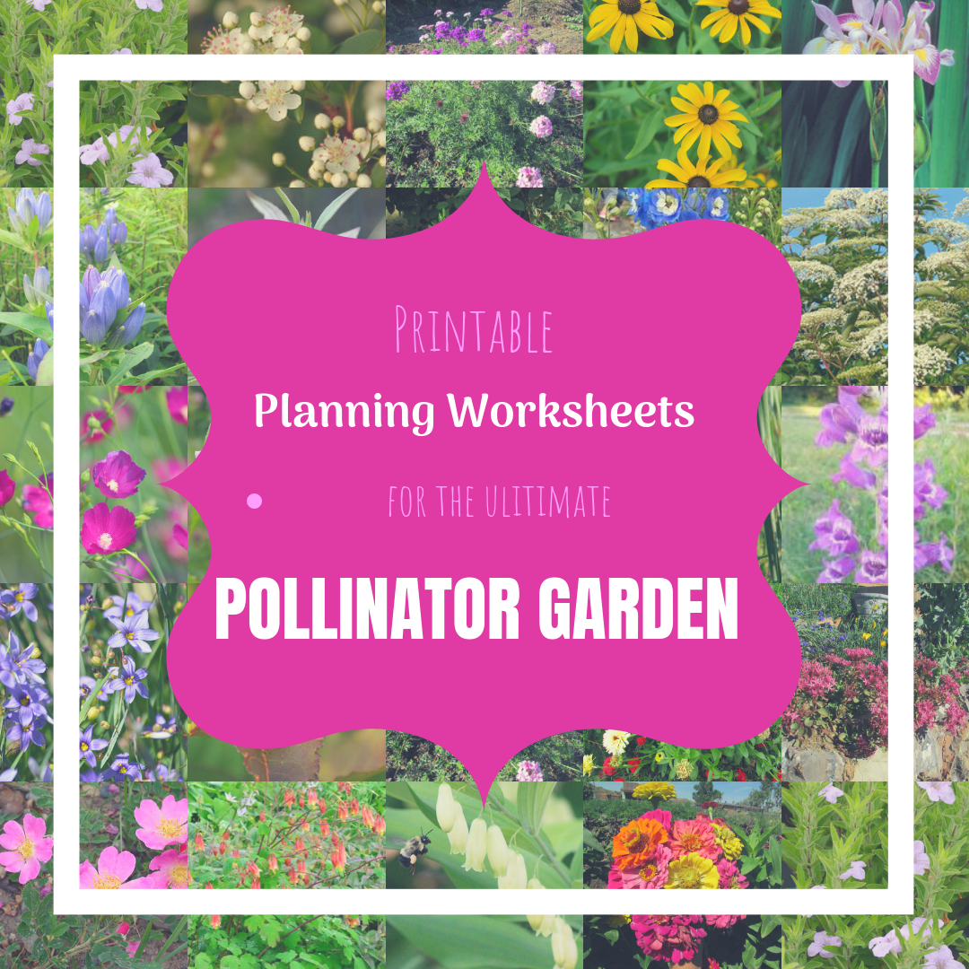 Over 100 Plants For Pollinators And How To Choose Them