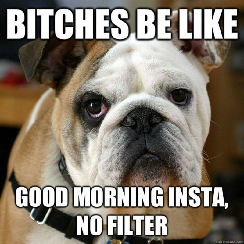 101 Good Morning Memes For Wishing A Beautiful Day For Him Her Good Morning Funny Pictures Funny Good Morning Memes Morning Memes