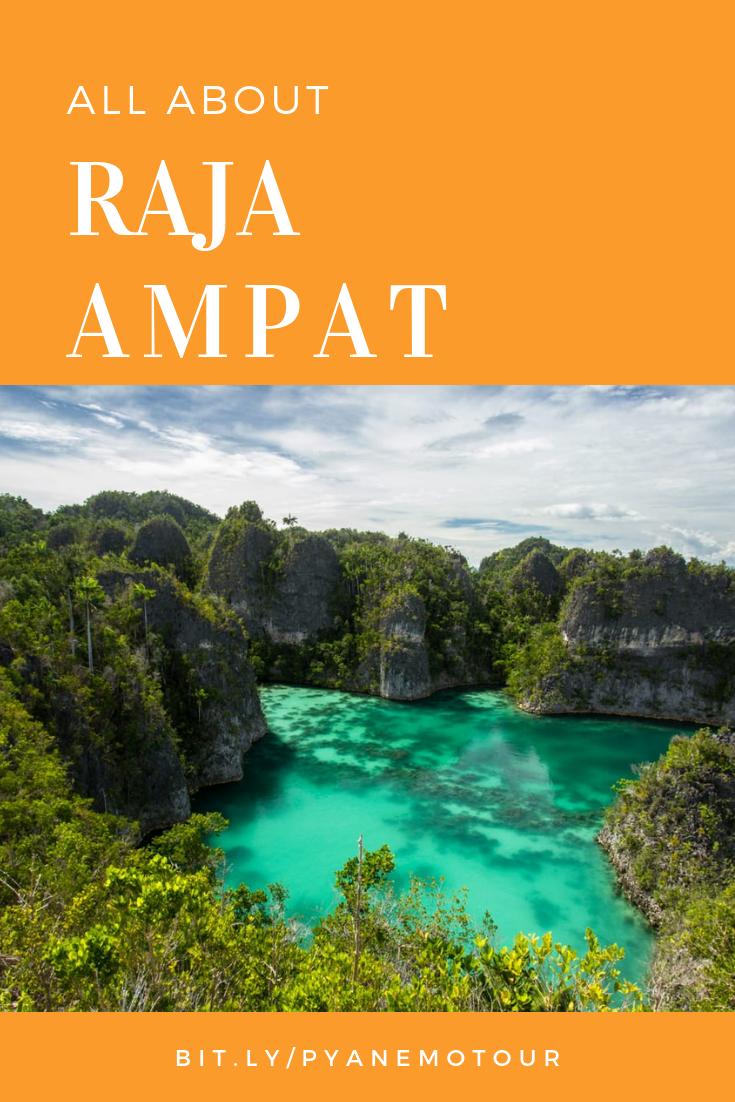 indonesia forex & perjalanan