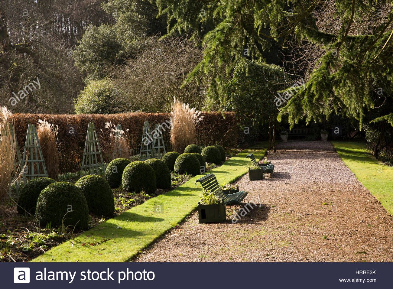 UK, England, Cheshire, Scholar Green, Rode Hall, gardens in winter ...