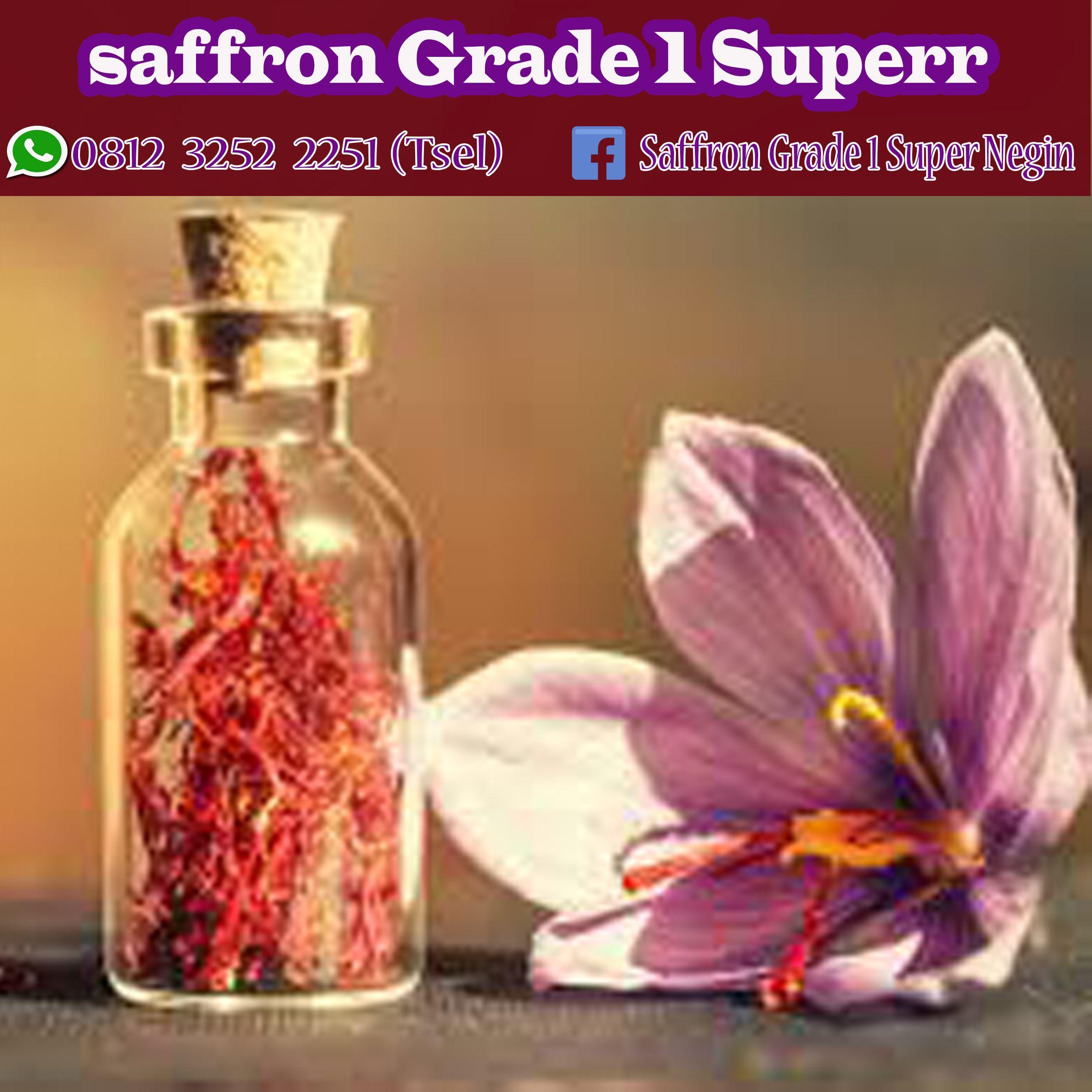 Terbaik Wa 62 812 3252 2251 Tsel Jual Bunga Saffron 1 Gram Bogor Yogyakarta Penjual Bunga Bunga Yogyakarta