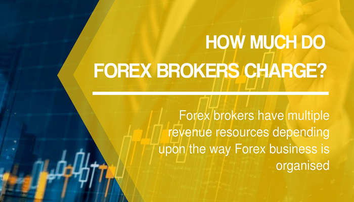 How much do Forex Brokers Charge? Online trading, Stock