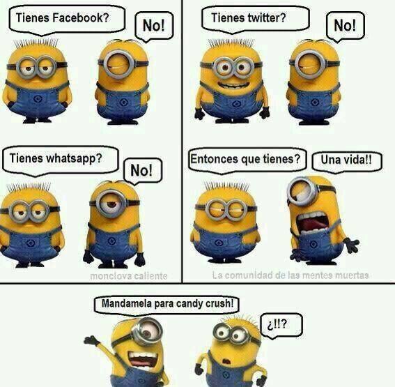 Minions Perdona Buscar Con Google Humor De Minions Cosas De Minion Memes Divertidos