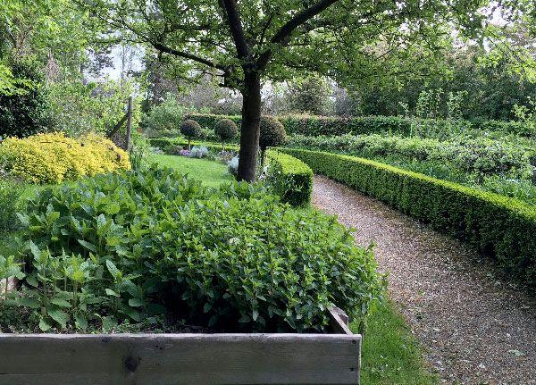 Travaux de jardinage en novembre   Jardinage, Idées jardin ...