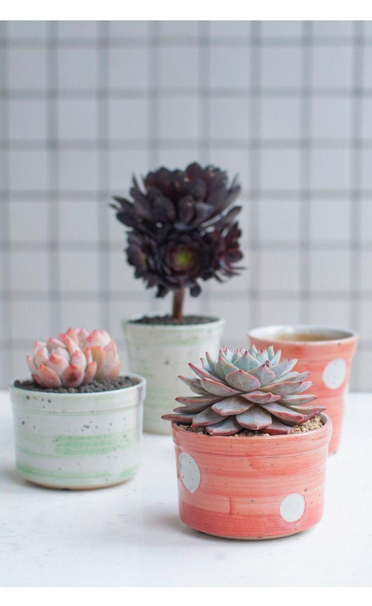 Bearies garden elegant polka dots handmade ceramic