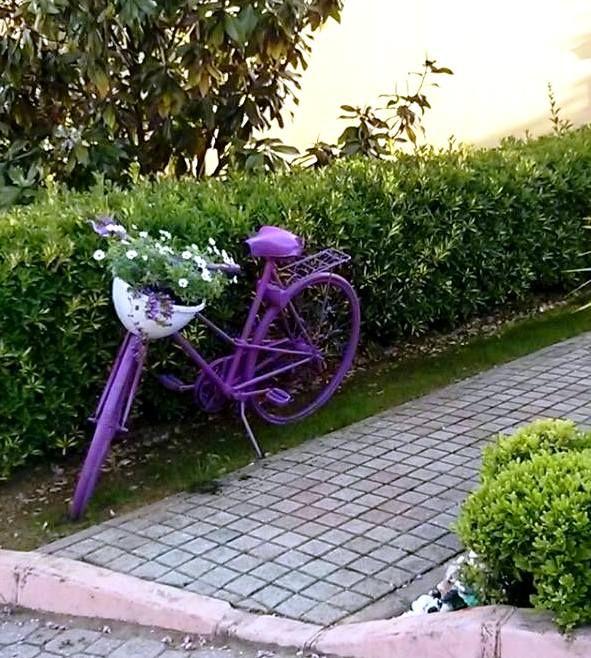 Bir Ogledensonrasi Degerlendirmesi Eski Bir Bisiklet Ve Sprey