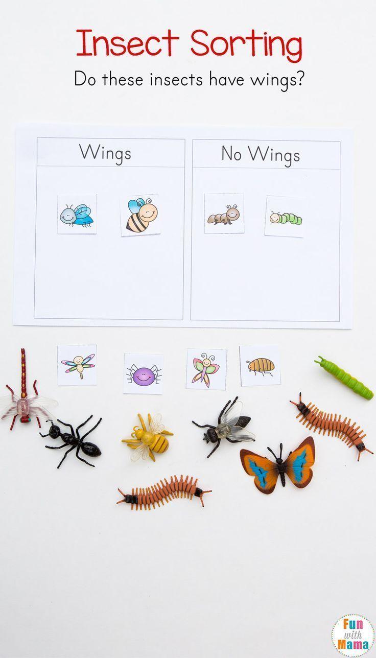 Preschool Insect Theme Sorting Worksheet Bug Activities In 2020 Insects Theme Preschool Insects Preschool Preschool Activities
