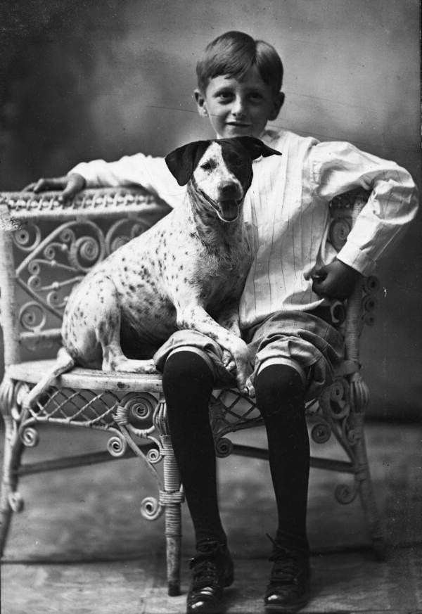 Boy posed with dog on wicker chair - State Archives of Florida