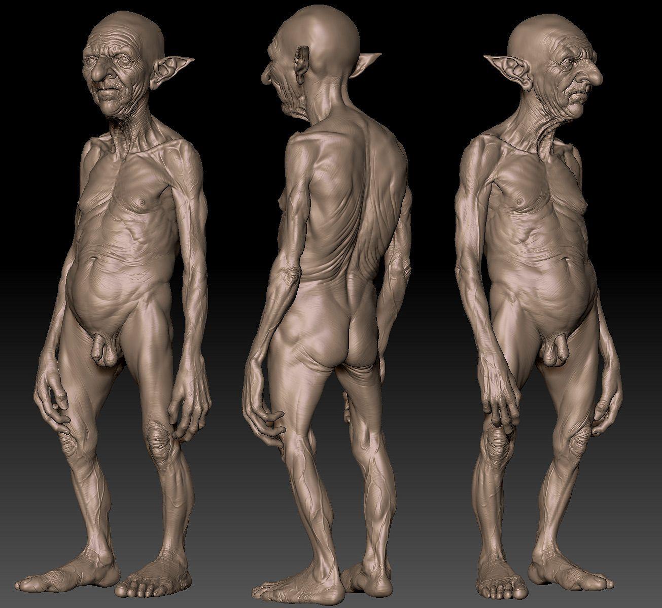 36+ Goblin anatomy info