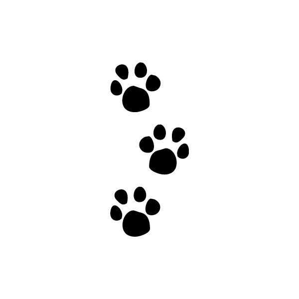 7e31ef1b7482 Image detail for -Paw Prints Clip Art, Printable Animal Tracks Graphic ❤  liked on Polyvore